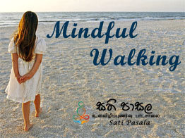 Mindful Meditation Walking Meditation Mindful Walking