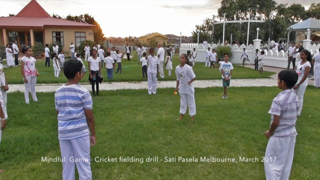 Cricket Fielding (Mindful Game)