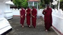 Sati Pasala at Alapalawala Pirivena, Daulagala (10)