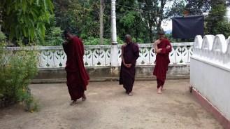 Sati Pasala at Alapalawala Pirivena, Daulagala (13)