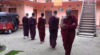 Sati Pasala at Alapalawala Pirivena, Daulagala (19)