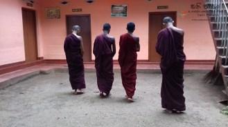 Sati Pasala at Alapalawala Pirivena, Daulagala (20)