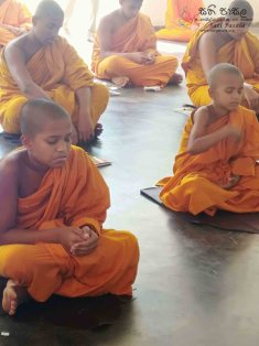 Monthly Sati Pasala for Venerable Members of the Clergy - 31st January 2019 (17)