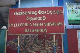 Sati Pasala at Ellepola Maha Vidyalaya - 31st January 2019 (6)