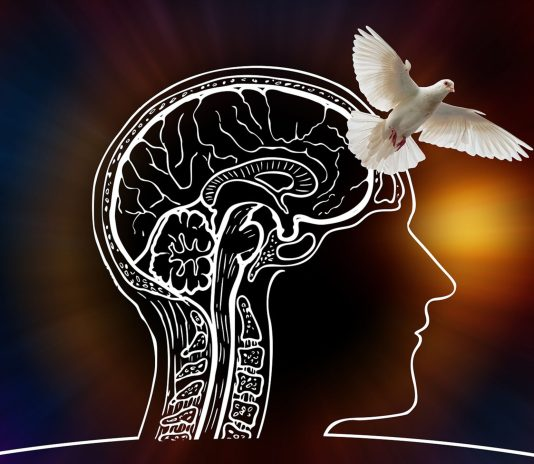 Psychology Course - Live Streaming