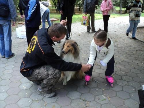 Târg de adopţie în Grădina Romei din Satu Mare