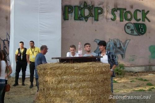 plopstock-2013-06