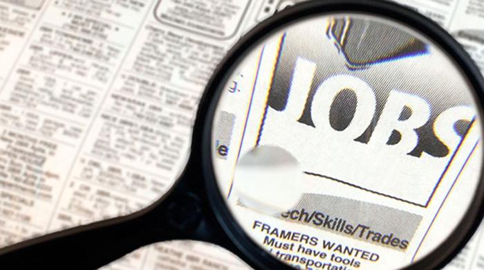 Vrei să te angajezi? Vezi ce locuri de muncă sunt vacante în județul Satu Mare