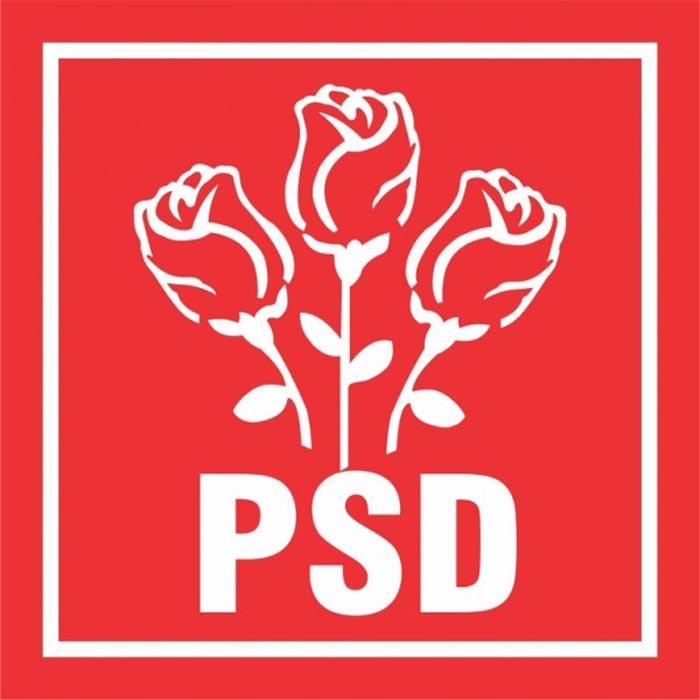 PSD Satu Mare: 14 candidați pentru parlamentare