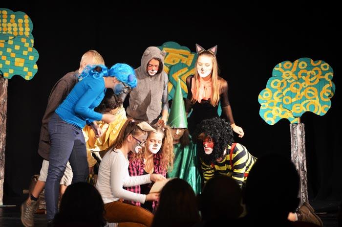 Punct final la Festivalul de Teatru pentru Tineri de la Carei