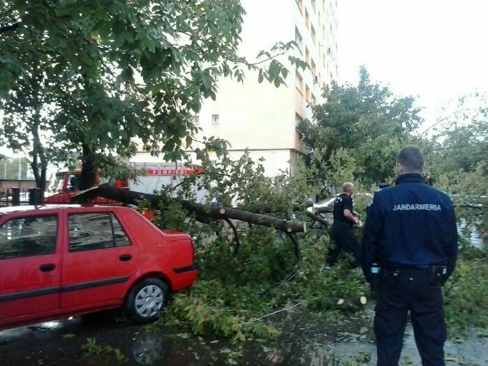 Furtuna a făcut ravagii în municipiu ! Copaci rupți și o mașină avariată (foto)
