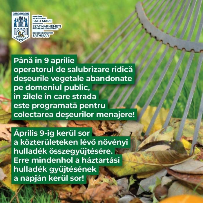 Începe colectarea deșeurilor vegetale în municipiu