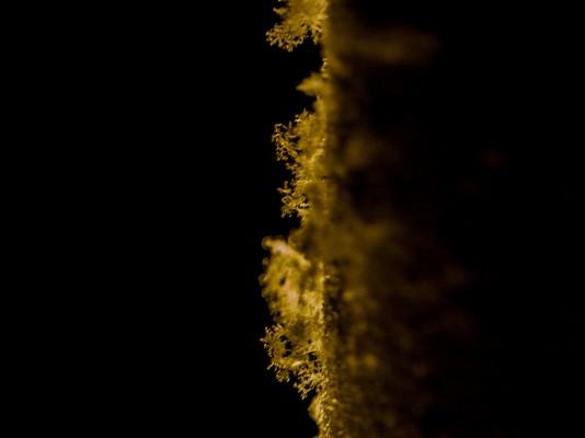 kristalleja-4