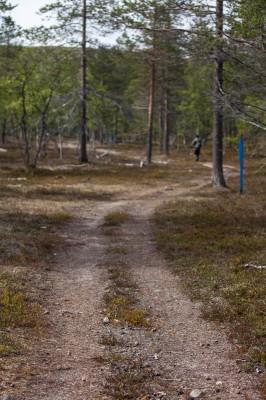 Patikka Luulammelle 2014-17