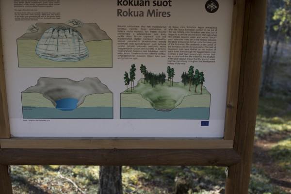 Rokua-18