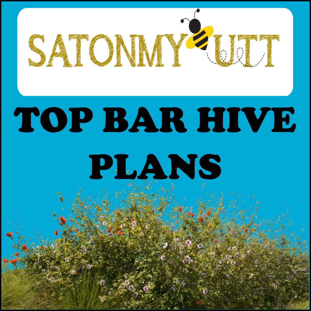 Top Bar Bee Hive Plans