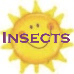 Insects Summer Camp