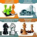 satranç turnuva cdleri