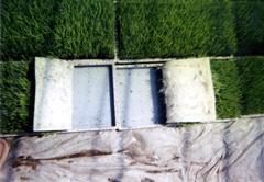 水稲用育苗培土 写真2