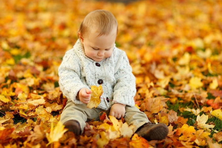 Gambar Lucu - Anak sedang beramain daun yang berguguran