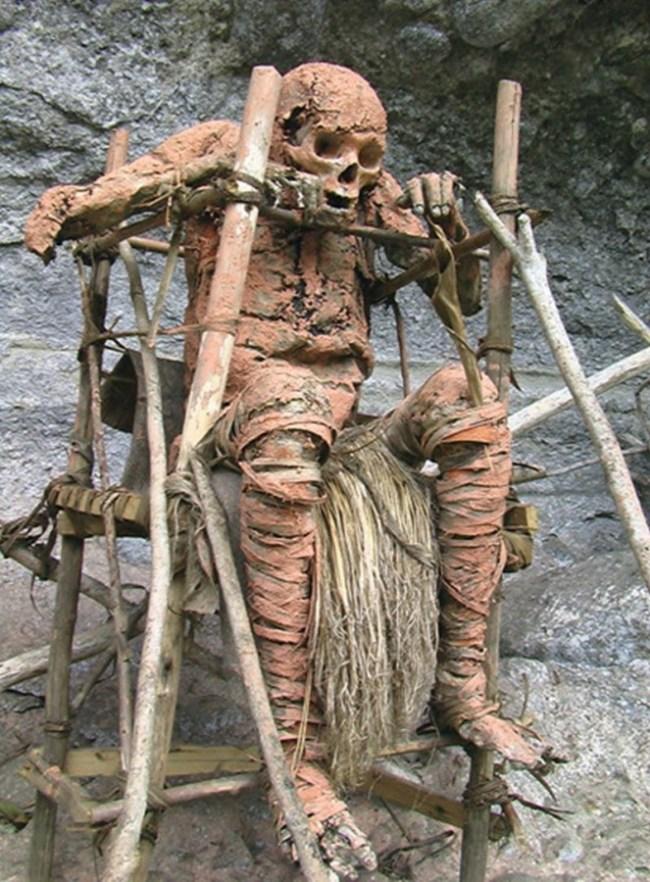 Mumi Suku Aseki