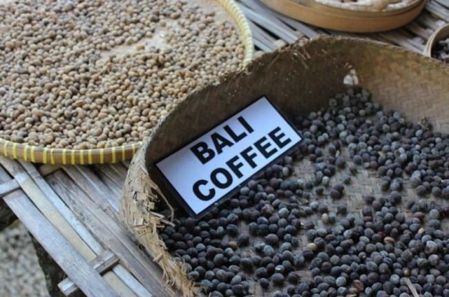 jenis kopi di nusantara