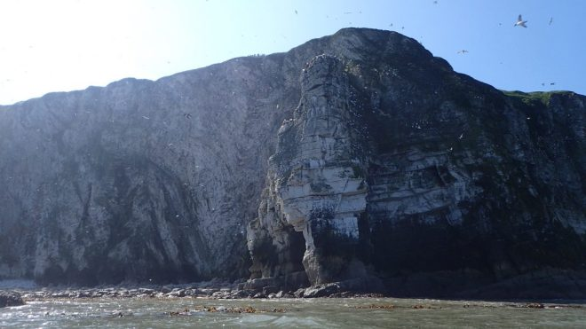 The Bempton Arch with it Gannet colony