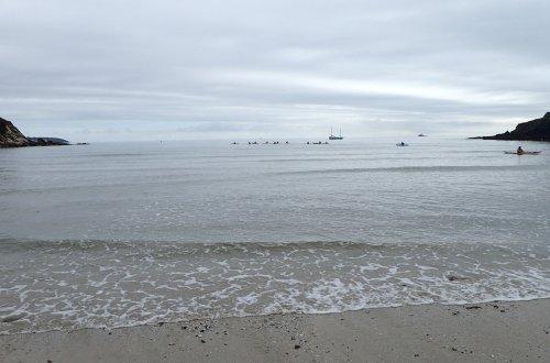 Maenporth – Sea Kayaking Cornwall Symposium Group