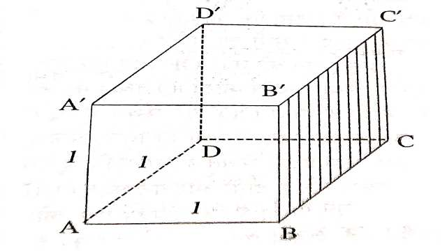 Surface Area and Volume of Cuboid