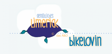Limerick-Schriftzug auf einem Sitzkissen exklusiv für bikelovin