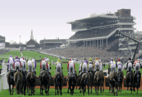 Discover how we spearheaded B2C video marketing at cheltenham racecourse