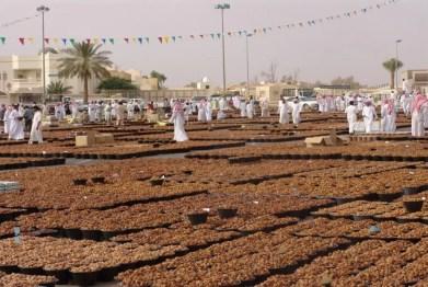 Qassim date festival (photo: Alastair Culham)
