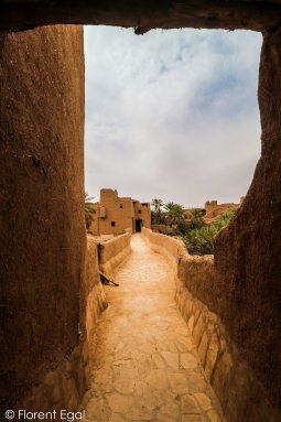Pathway meandering through Ushaiger's houses and palmgroves (photo: Florent Egal)