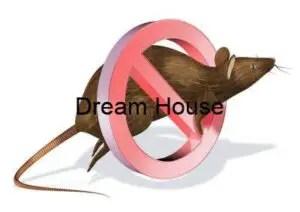 شركة مكافحة الفئران جنوب الرياض