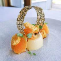 Rosemary Custard with Mandarin Dessert