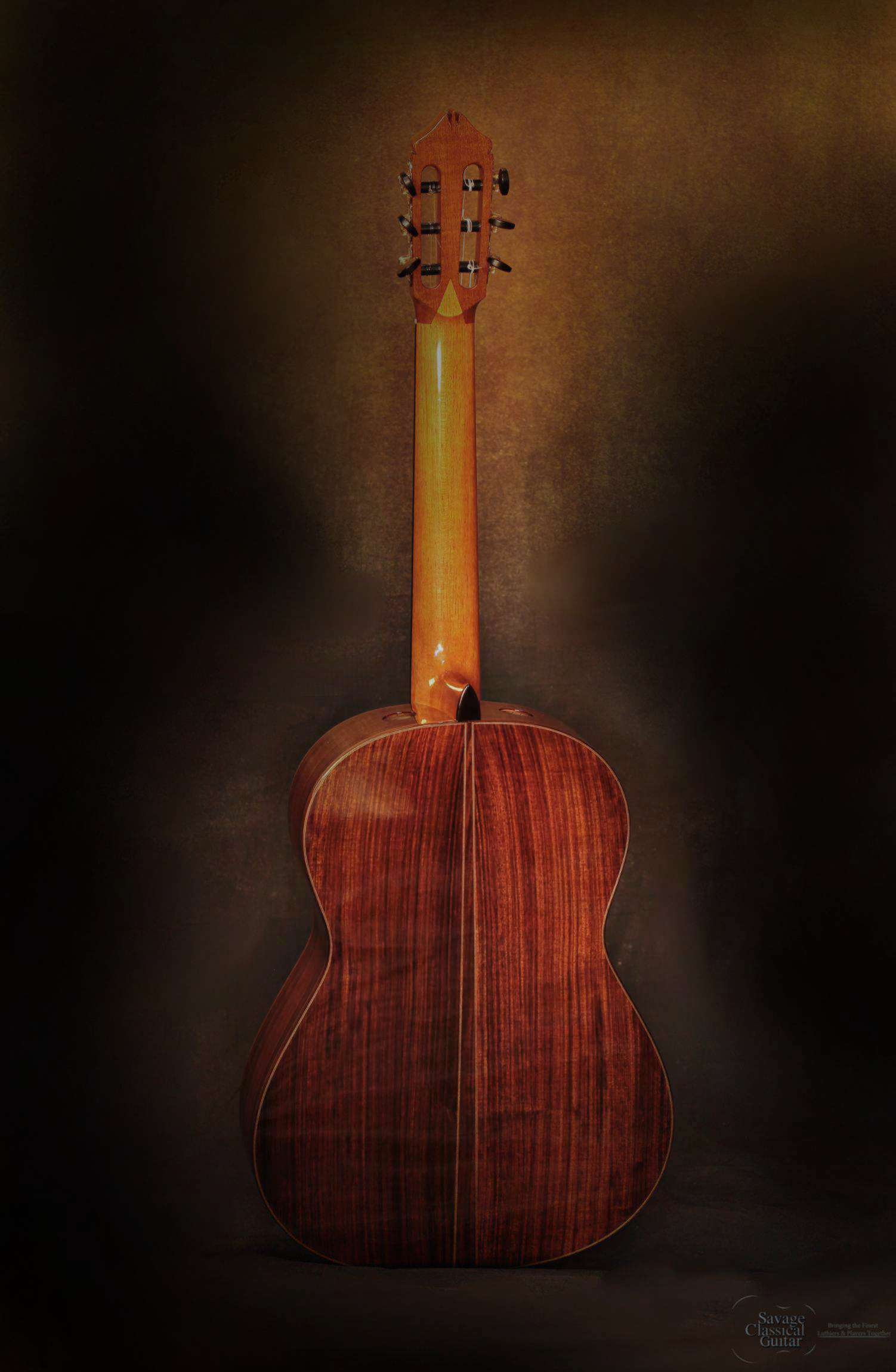 Hill Classical Guitar Signature Offered By Savage