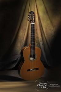 Gil Carnal Classical Guitar
