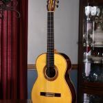 2008 Ken Whisler Classical Guitar #17