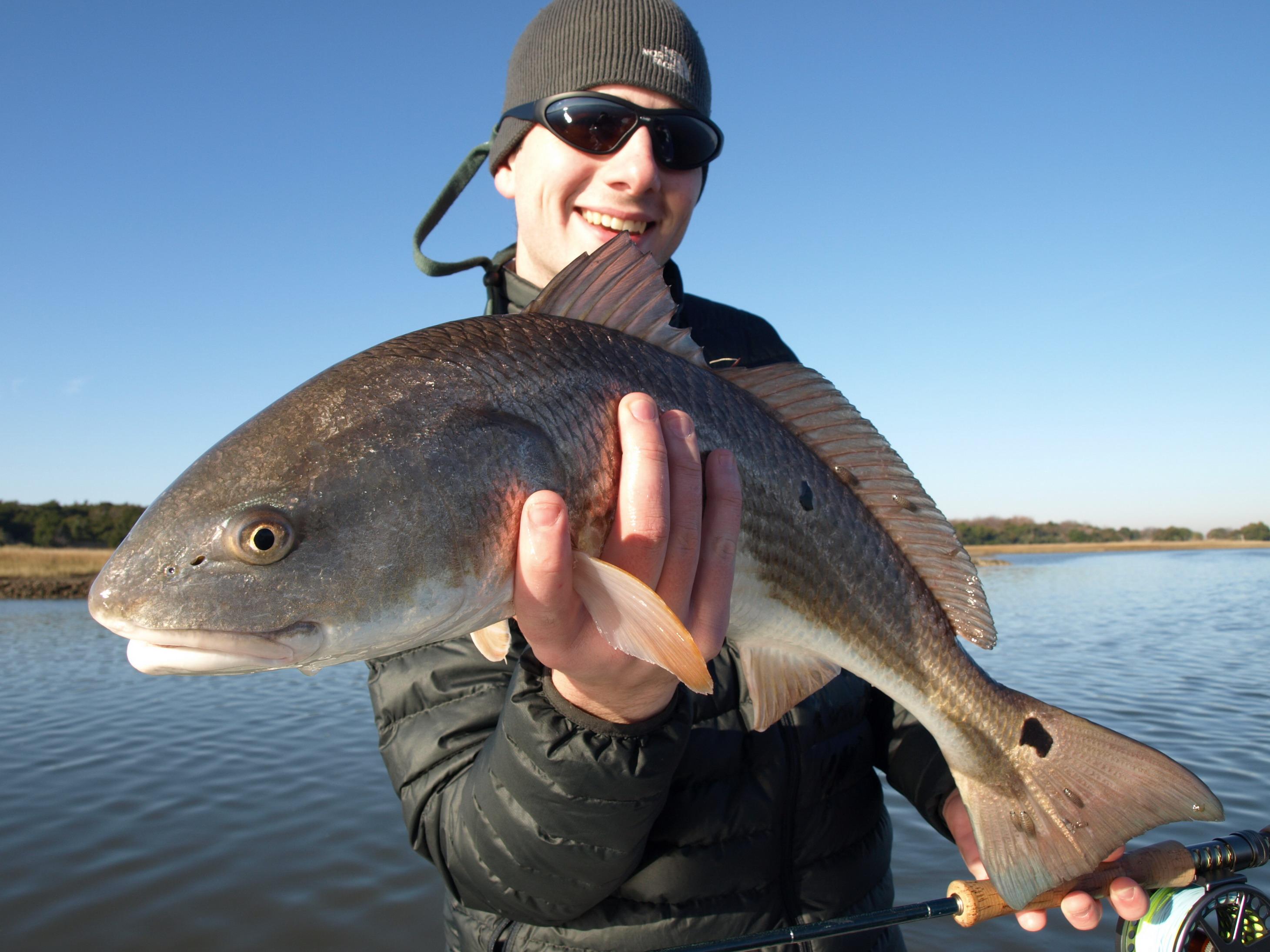 Hilton head fly fishing charters for Flying fish savannah ga