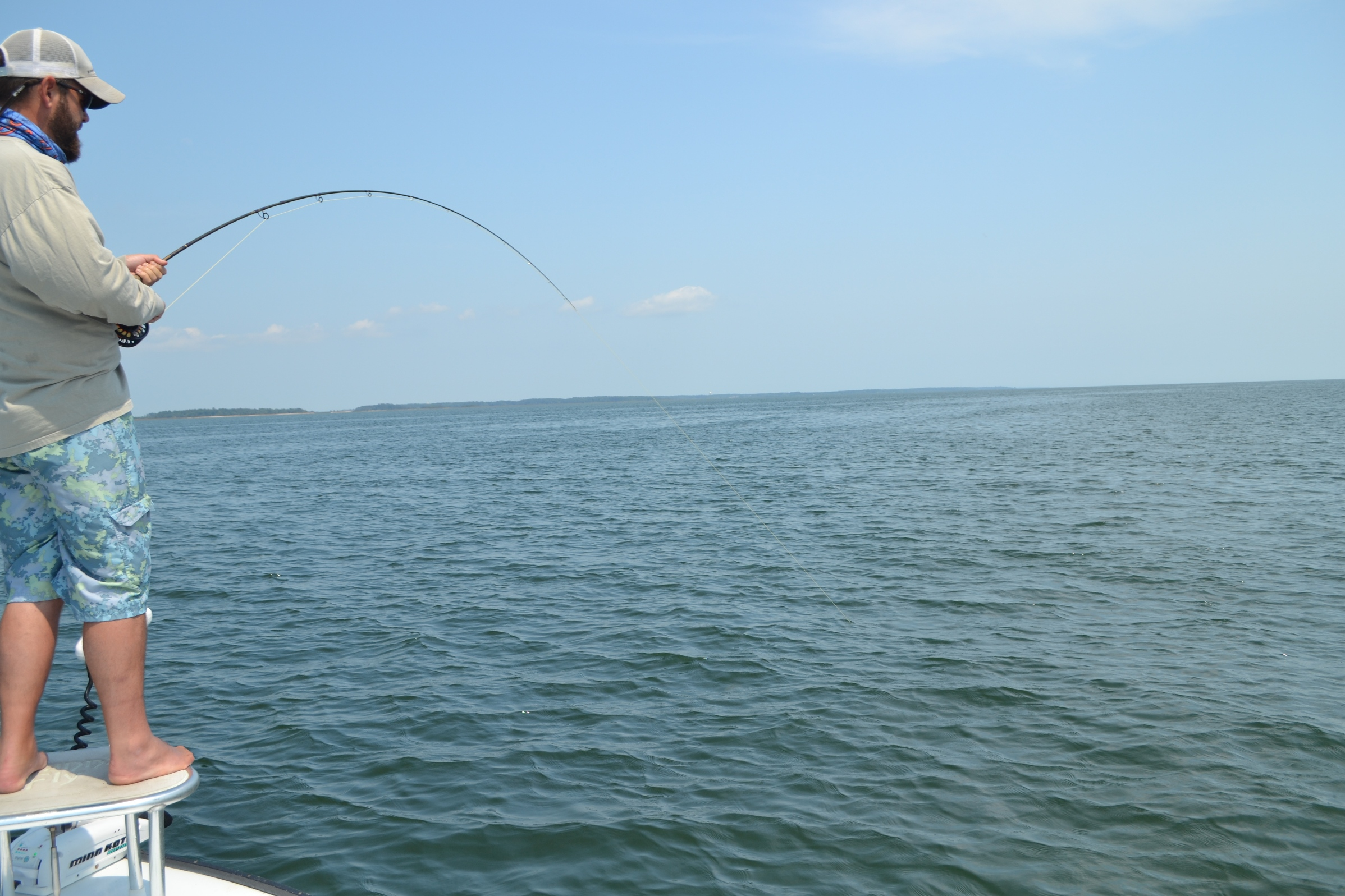Hilton head savannah fly fishing for Flying fish savannah ga