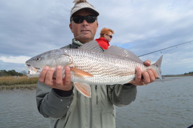 Hilton head beaufort savannah fly and spin fishing for Flying fish savannah ga