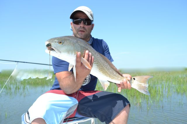 Tybee savannah hilton head fly and spin fishing charters for Savannah fishing charters