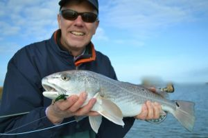 fly fishing for red fish