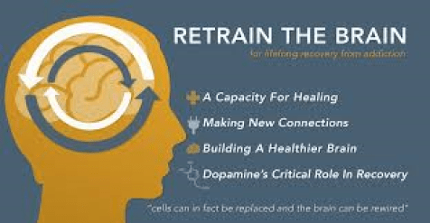 neuroplasticity and addiction recovery