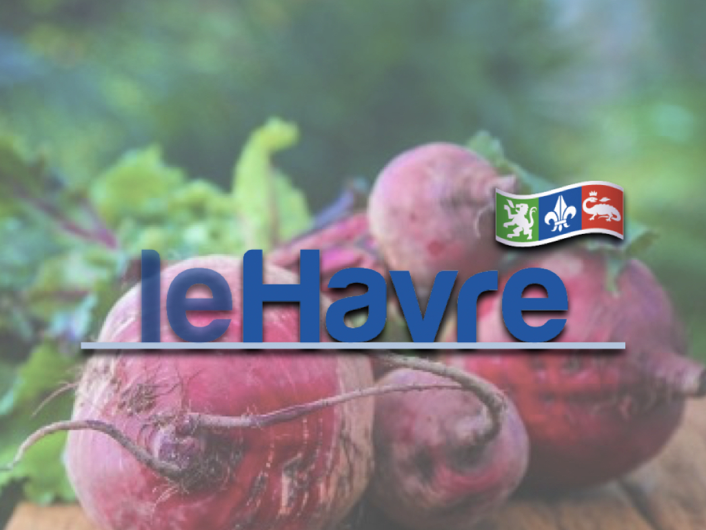 logo-lehavre-saveeat