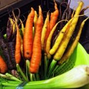 À la découverte des légumes anciens et de leurs secrets