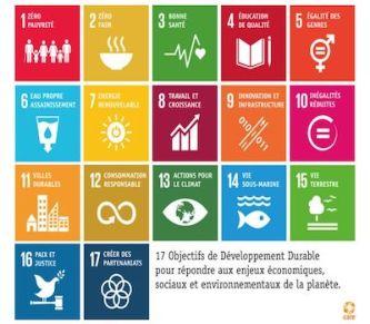 objectif du développement durable save eat