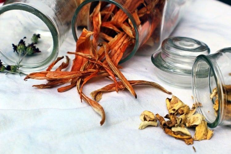 faire des désodorisants naturels avec des épluchures d'agrumes avec Save Eat