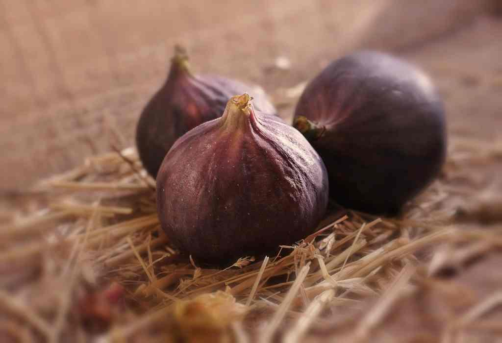figues violettes sur paille saveeat