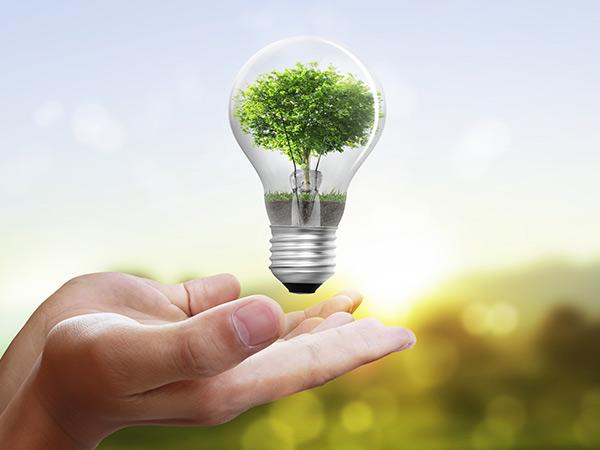 risparmio energetico lampadina